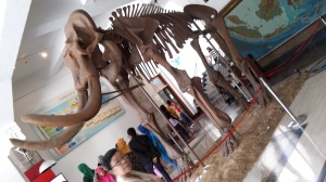 Manny the Mammoth