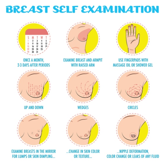 Breast self exam, breast cancer monthly examination infographic